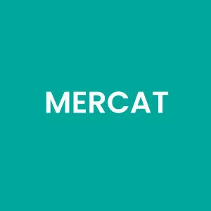 formigues_mercadillo