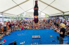 formigues festival 2017